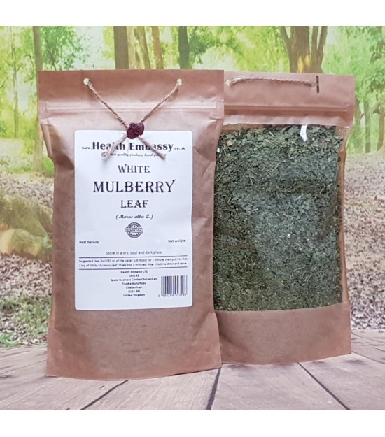 White Mulberry Leaf Tea (Morus alba L.)